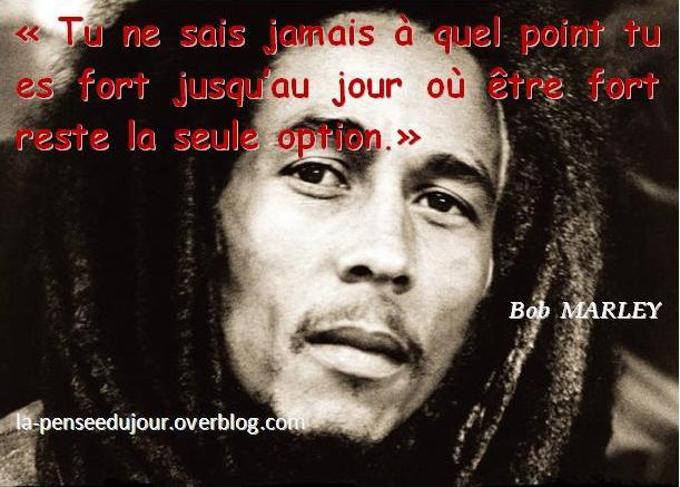 citation bob marley force